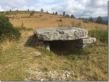 Dolmen de Pierre plate[4]