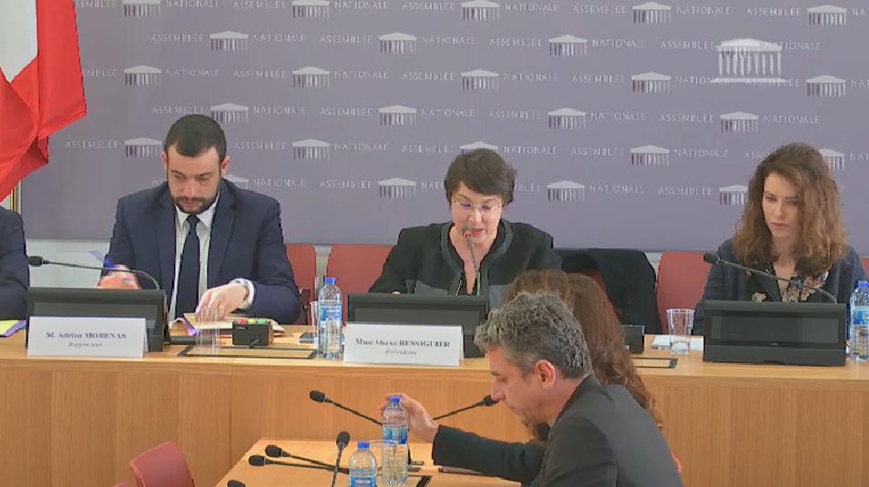 Commission parlementaire contre les groupuscules d'extrême droite : la présidente Ressiguier sèchement recadrée par le Préfet Pouëssel