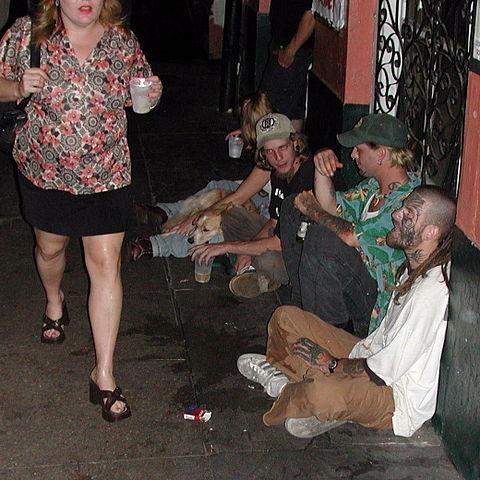 punks à chien