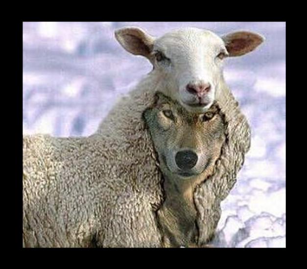 Prêtre assassiné en Vendée : la parabole du loup et des brebis